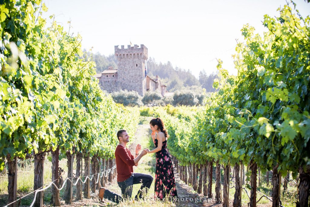 Proposal at Castillo Di Amorosa in St Helena, CA