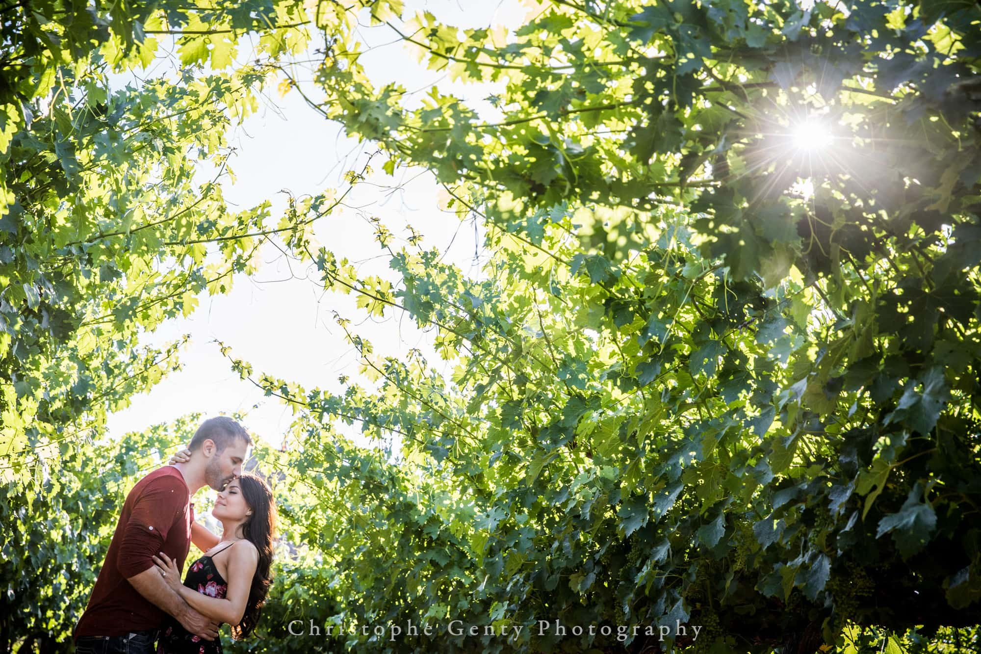 Castello di Amorosa Marriage Proposal Photography 335