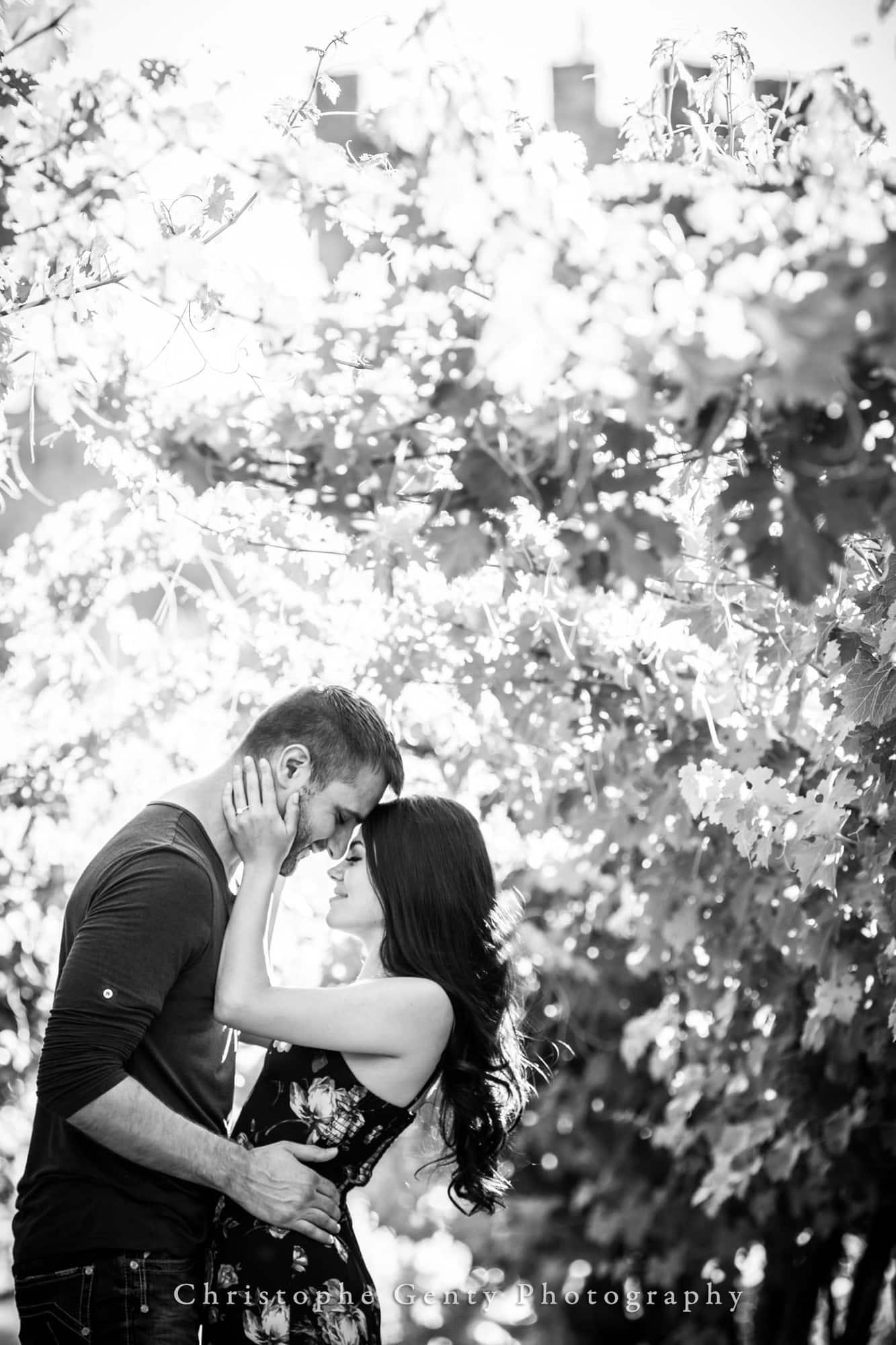 Castello di Amorosa Marriage Proposal Photography 356