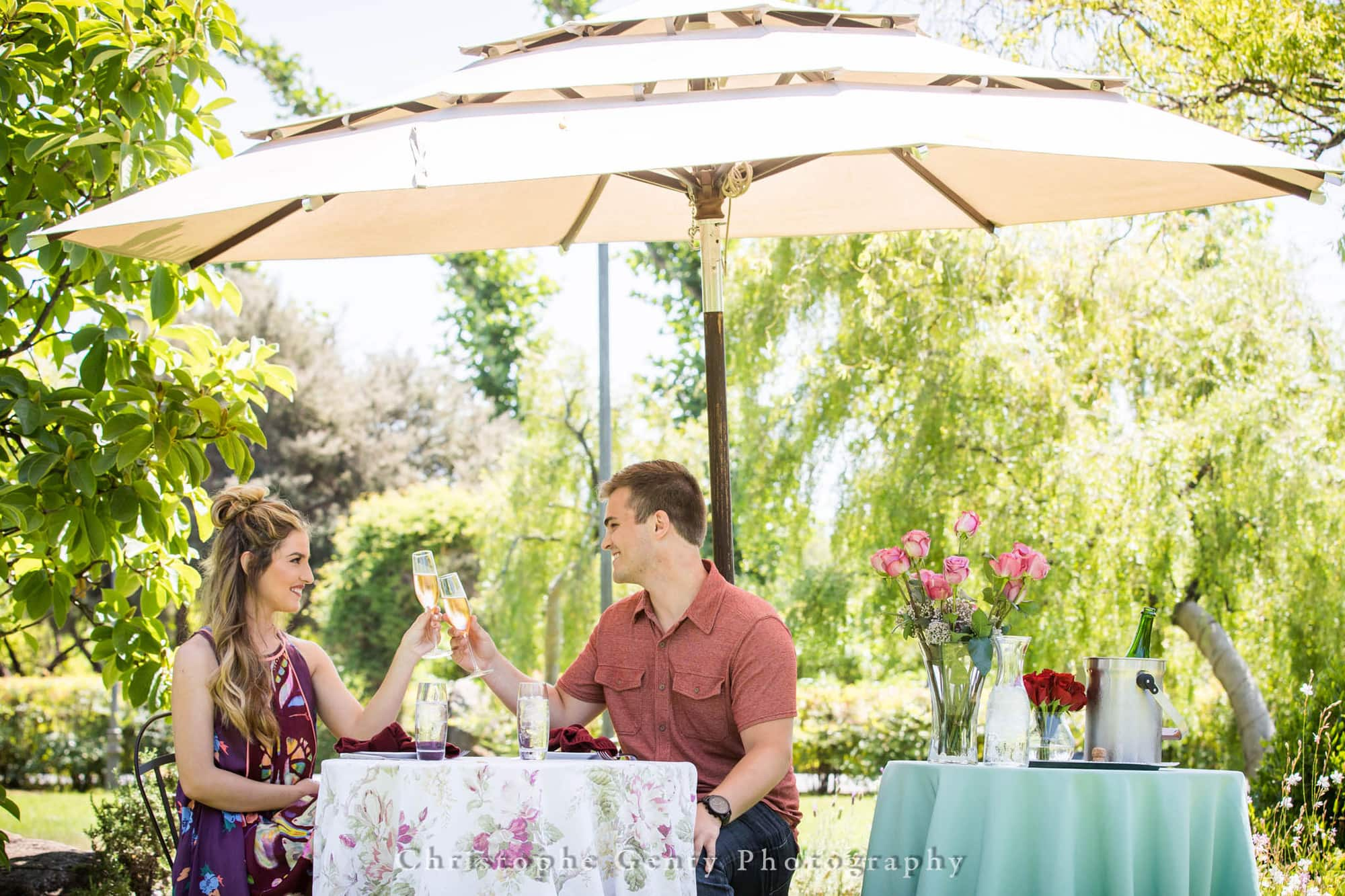 Marriage Proposal Photography at Peju Province Winery in Rutherford, California