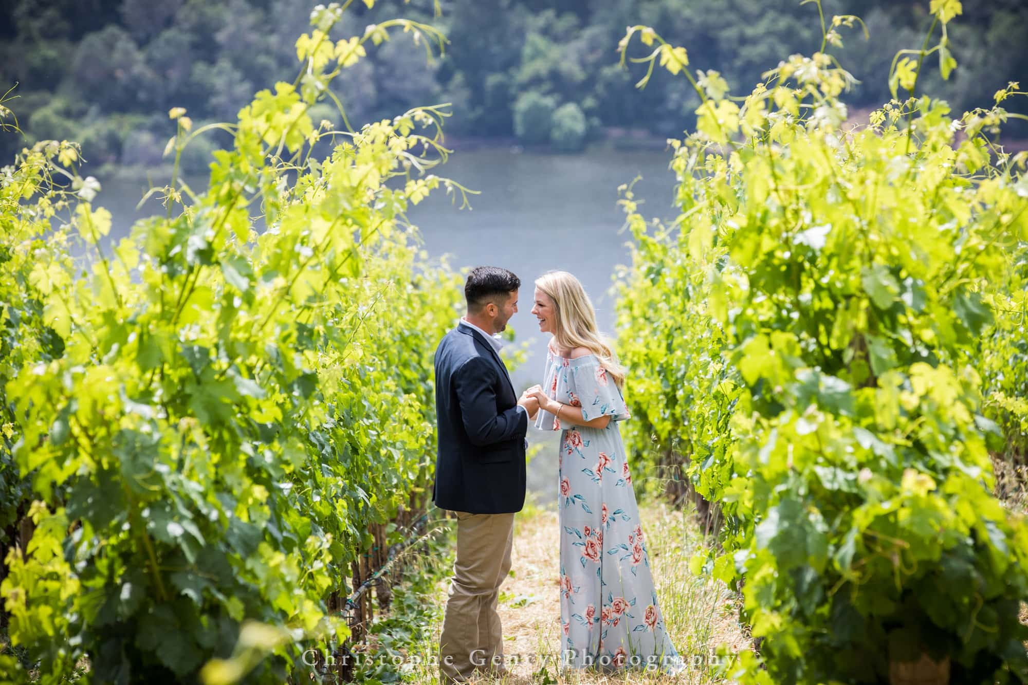 Marriage Proposal Photography in Napa -1006