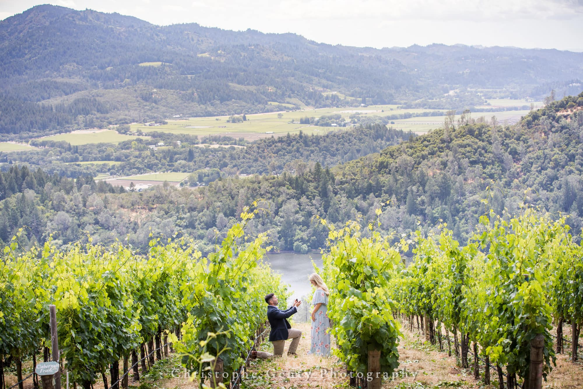 Marriage Proposal Photography in Napa -1010