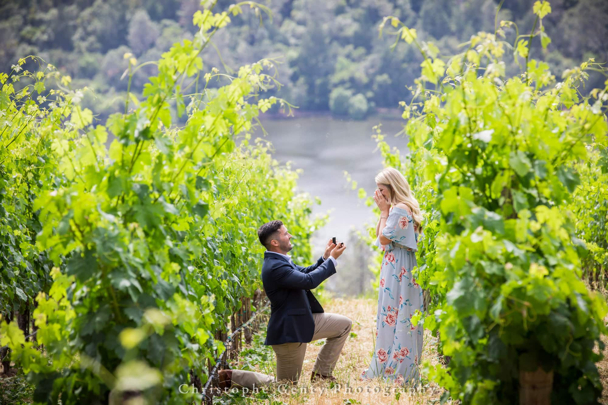 Where to propose in Napa