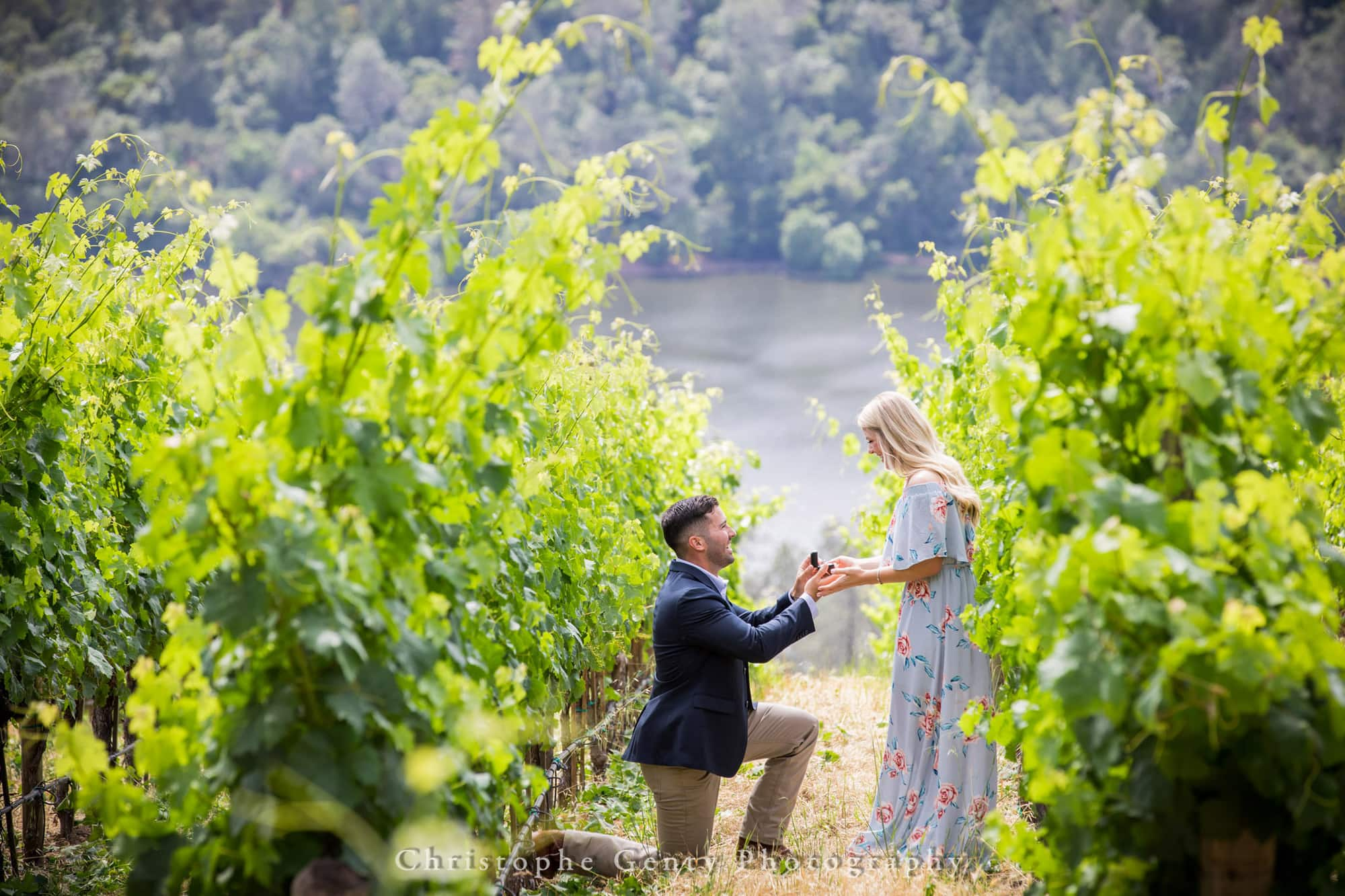 Marriage Proposal Photography in Napa -1012