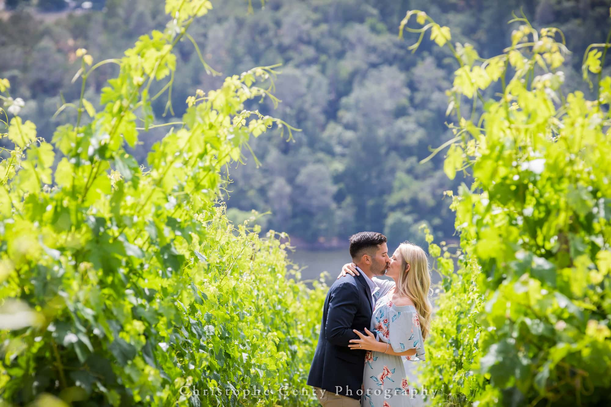 Marriage Proposal Photography in Napa -1014