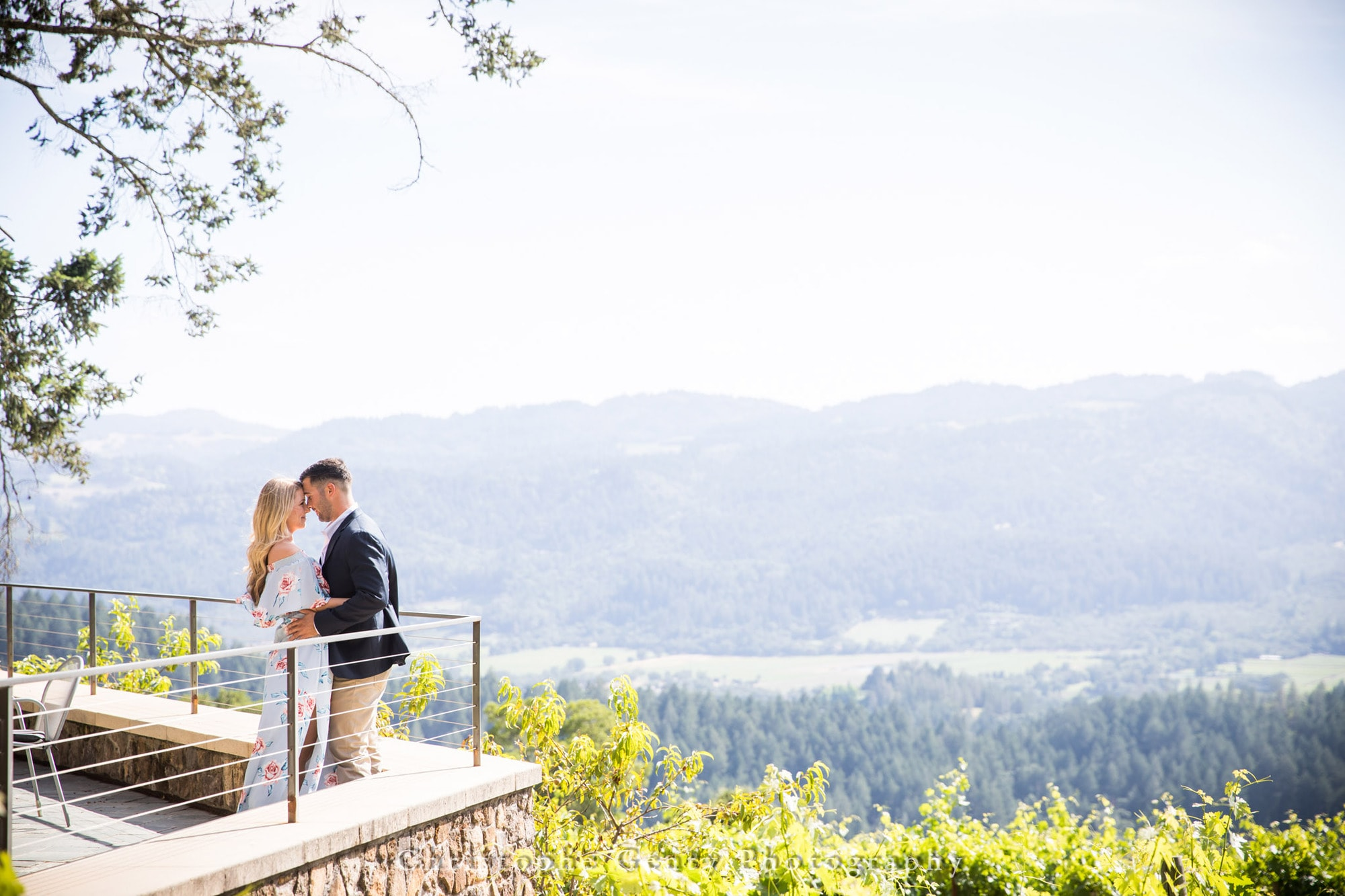 Marriage Proposal Photography in Napa -1037