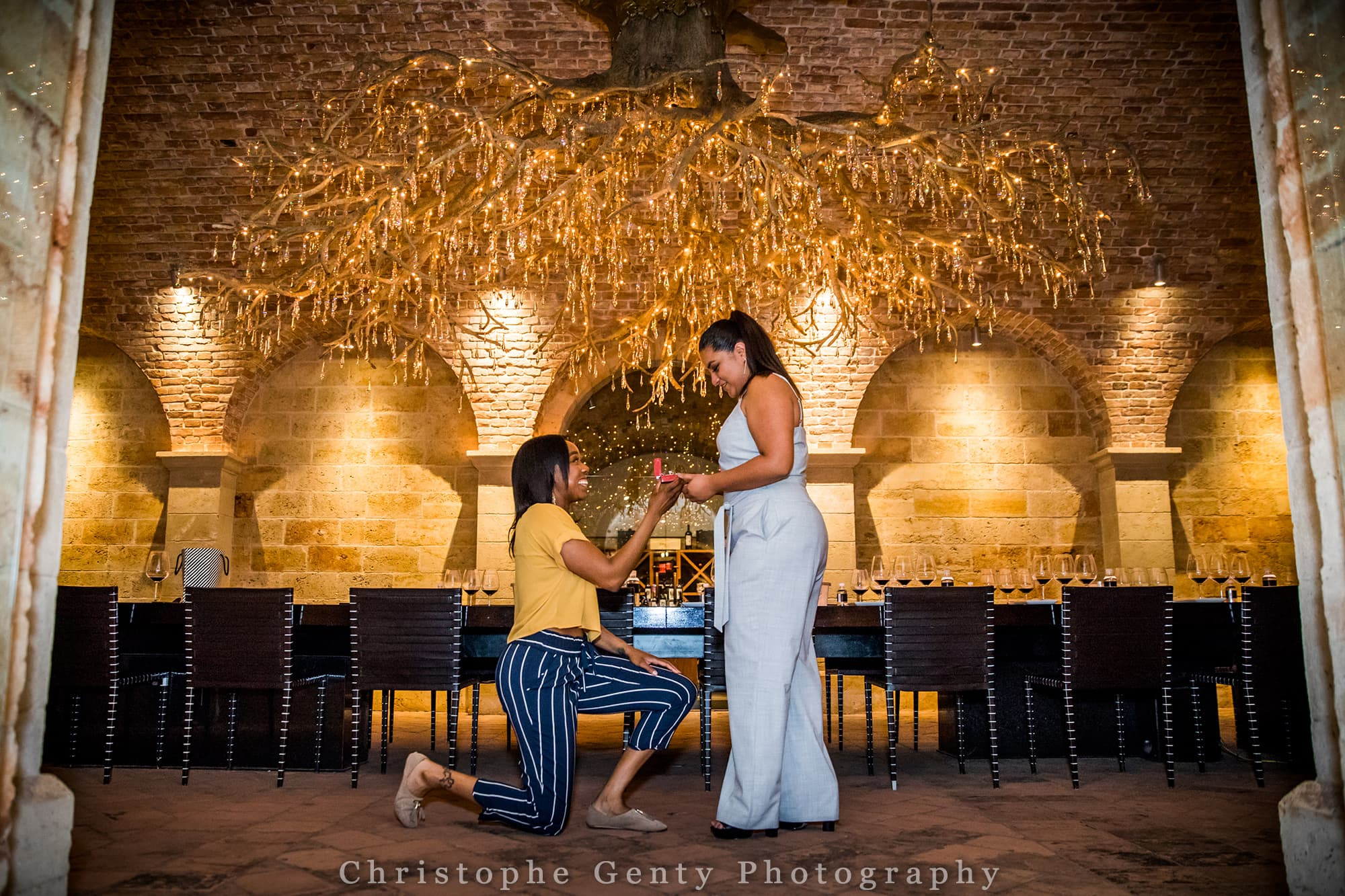 Marriage Proposal Photography in The Napa Valley - Hall Rutherford