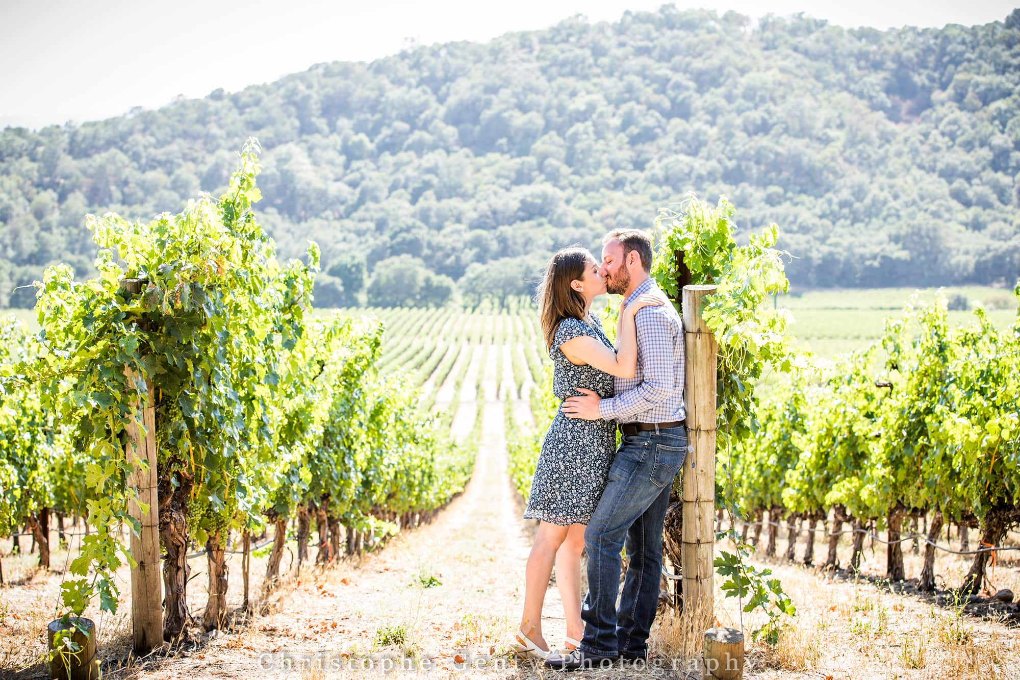 Best Proposal ideas  in the Napa Valley