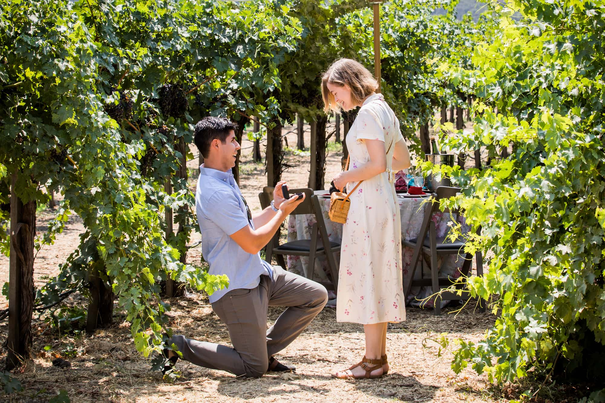Best Proposal Wineries in Napa - Peju Province Winery, St Helena, CA