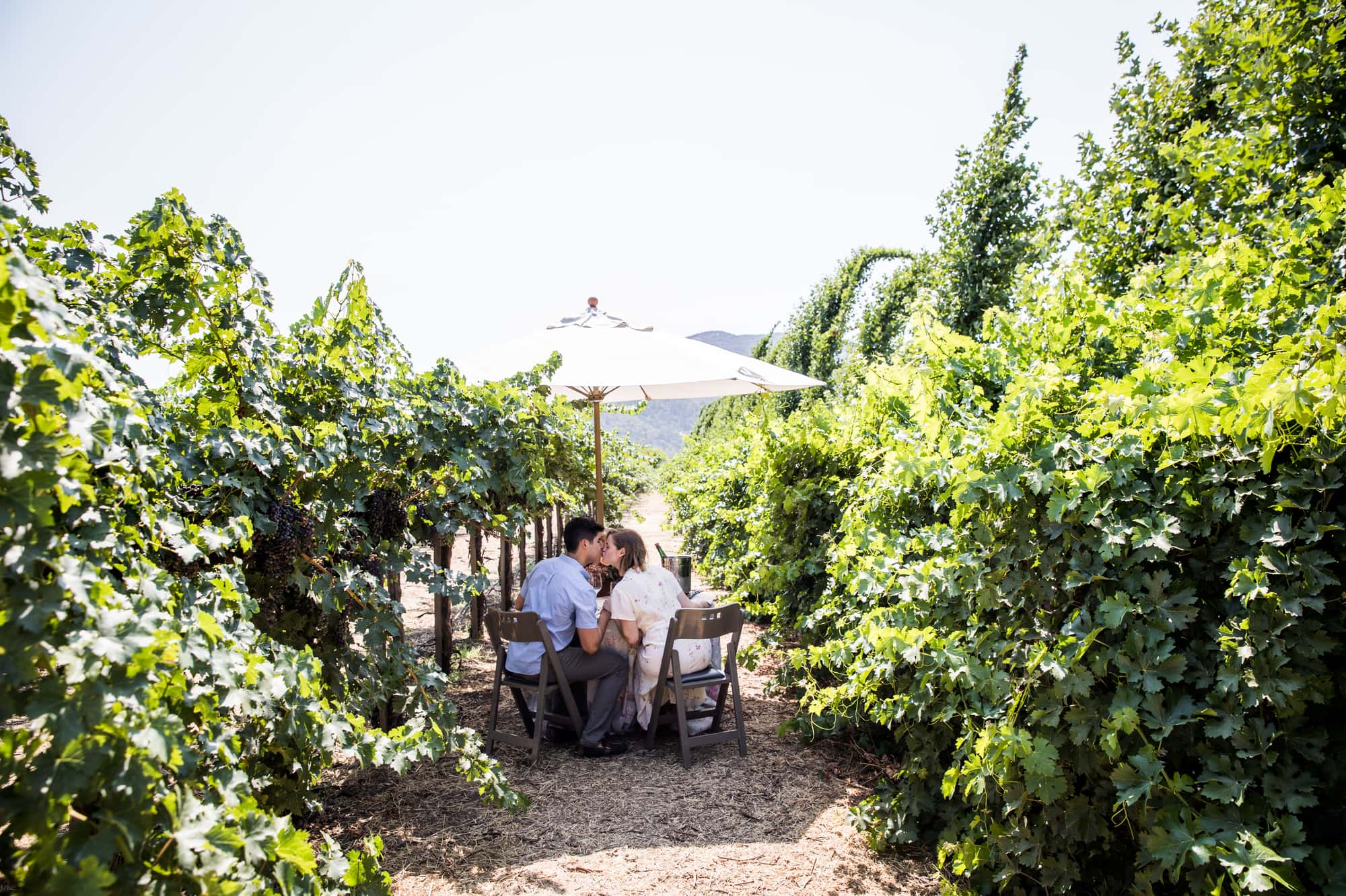 Best Proposal locations - Peju Province Winery, St Helena, CA