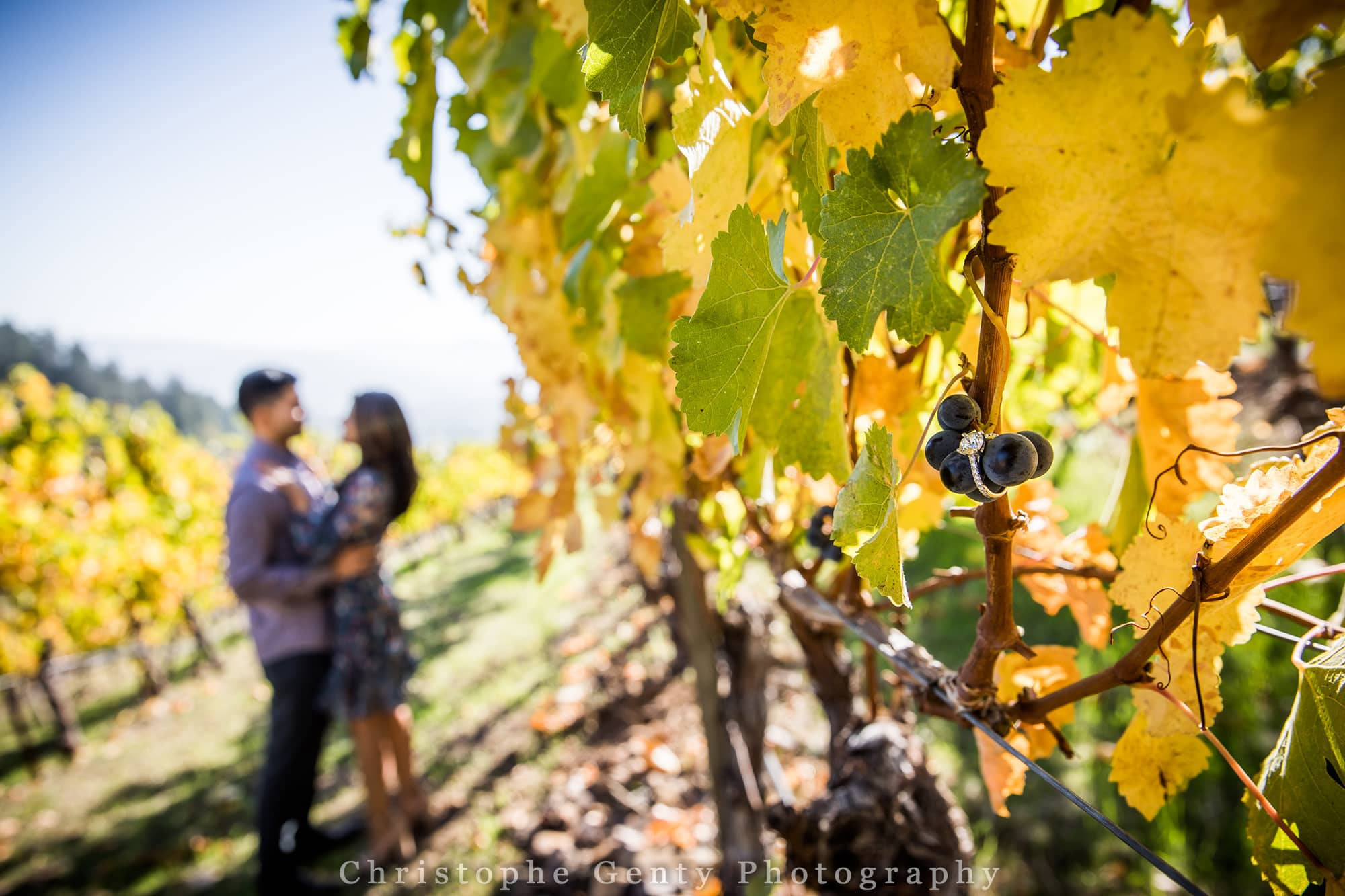 Proposal ideas in the Napa Valley - Newton Winery, St Helena, CA