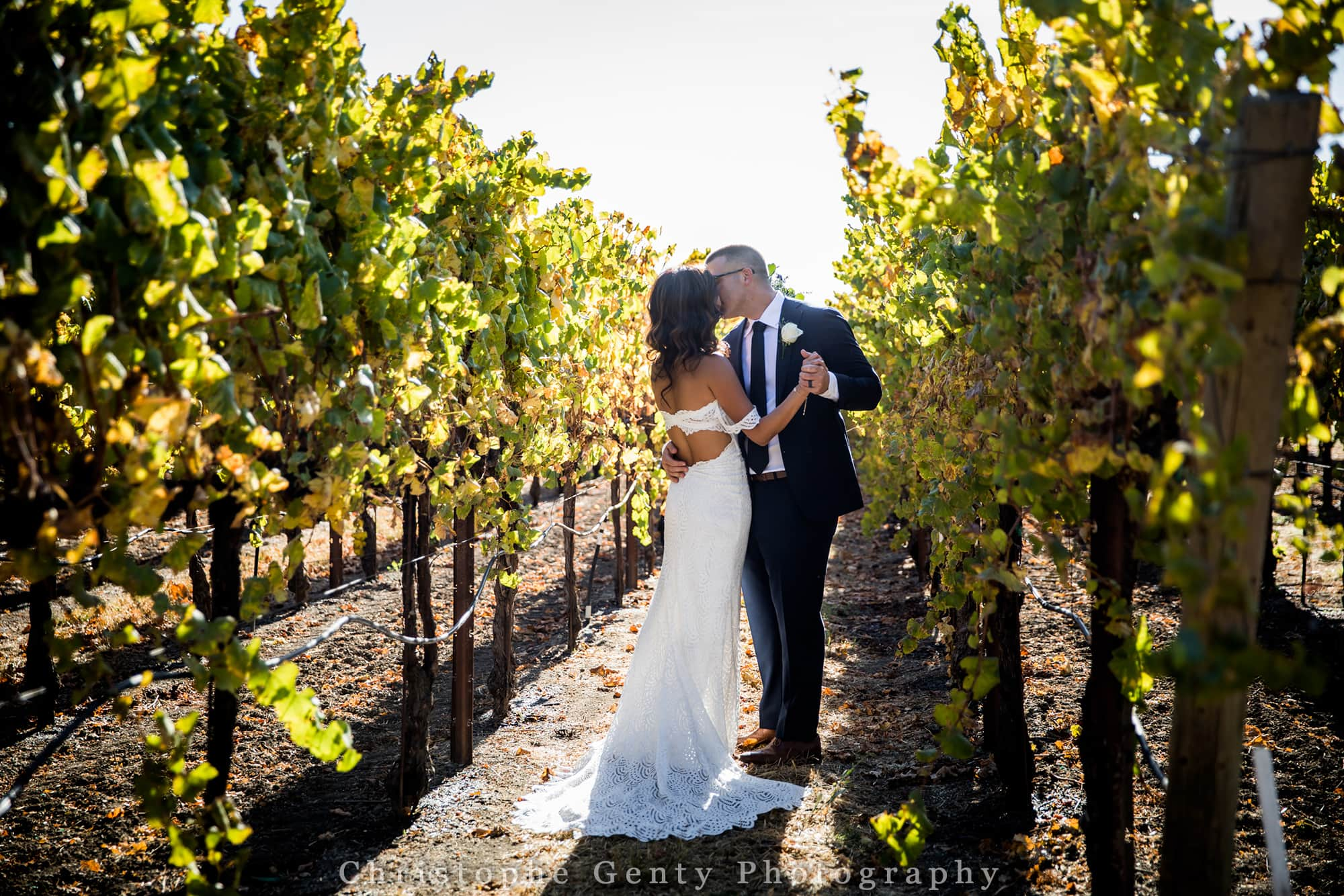 Elopement photography at Robert Young Winery in Geyserville in CA